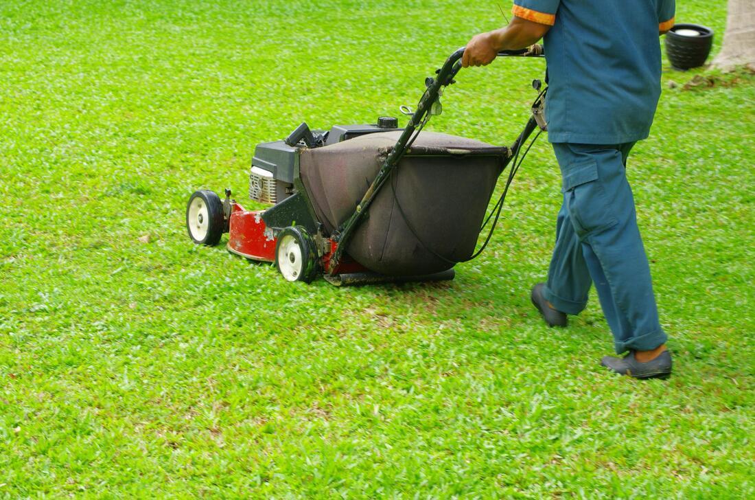 A Man Mowing Lawn