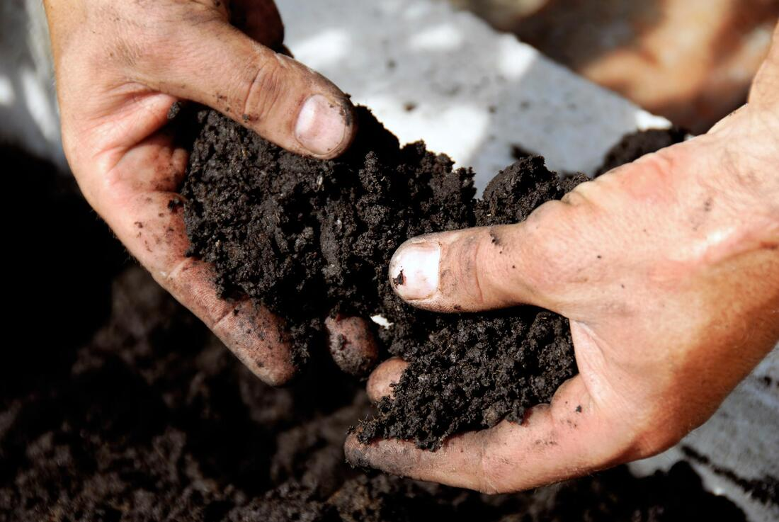 Man Holding Soil