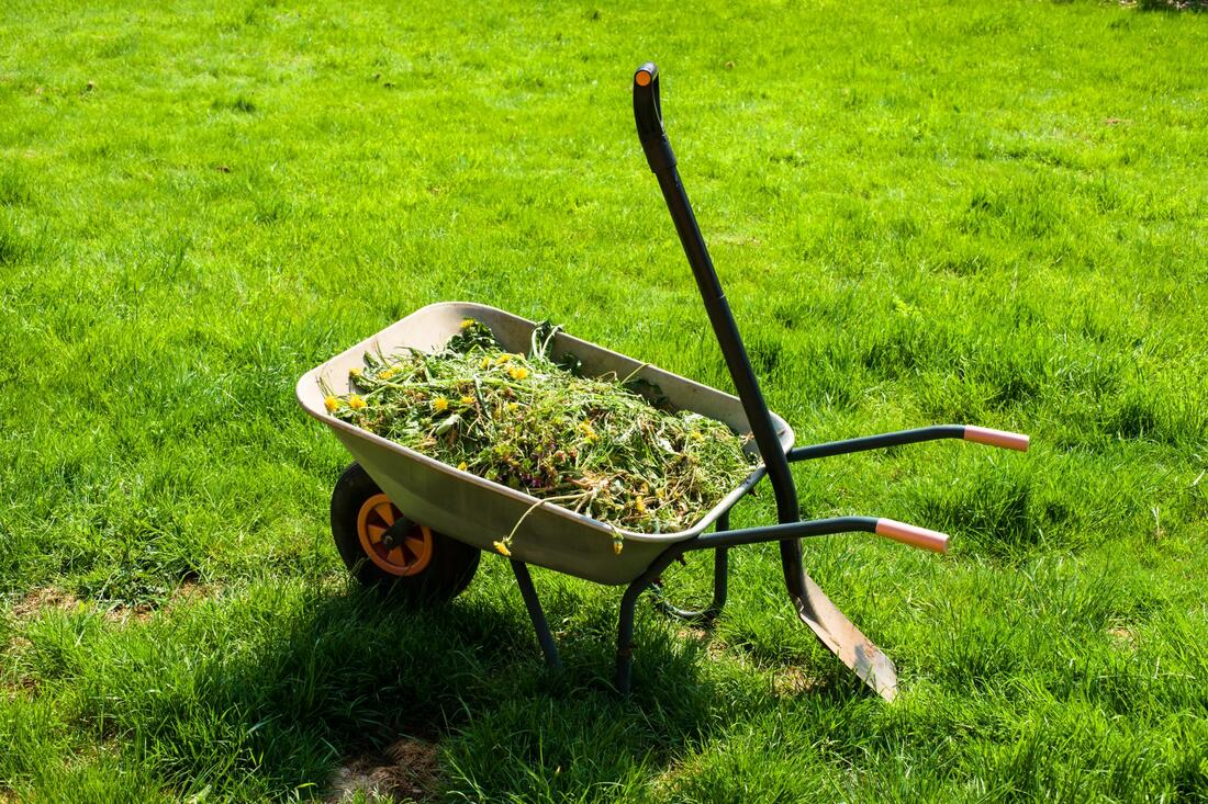 Lawn Mowing Trolley
